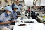 Textile and garment exports target set at $30b