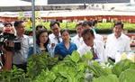 HCM City to host farm produce fair