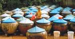Binh Thuan tourism and trade fair kicks off