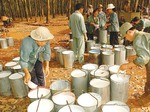 Financial violations imperil rubber firm's IPO