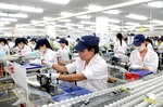 VN's shadow economy sparks debate