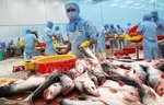 Tra fish exports to exceed $2b
