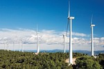 Ninh Thuan to wind up four new wind power plants