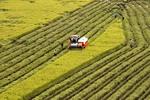 Hau Giang, RoK link up on farm tech