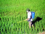 VN's fertiliser and pesticide imports from China fall sharply