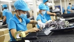 VN drops on WB business index