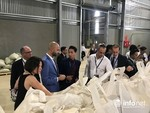 Factory processing export coffee opens in Sơn La