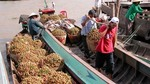 Vegetable, fruit export growth slows