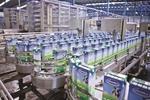 Vinamilk's profit rises 9 per cent