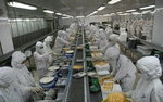 PAN Farm raises its Sao Ta stake
