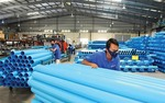 SCIC to sell stake in Binh Minh Plastic JSC