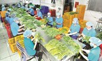 Viet Nam fruit exports skyrocket
