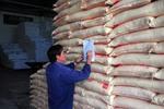 Sugar prices plunge on smuggling