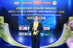 Panasonic Vietnam honoured with 2018 Golden Dragon Award