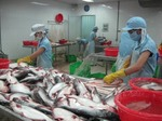Tra fish industry grapples with export difficulties