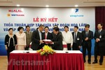 VNPT provides IT solutions for Hoa Lam Group