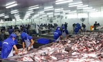 Tra fish industry facing dangerous situation, warn experts