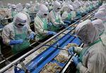 Viet Nam's exports of seafood to EU crash