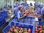 Produce exports to top $4b this year
