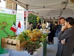 Vietnamese farm produce shines in Paris