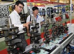 Viet Nam needs reforms for new FDI strategy