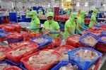 Viet Nam to promote seafood exports to Brazil