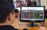 Việt Nam stocks back down