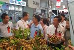Lotte Mart hosts Son La longan promo