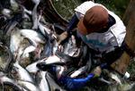 PPP deal aims for sustainable fishing