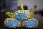 Mainland frauds damage island garlic brand