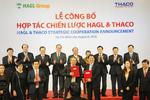 Thaco signs strategic deal with HAGL