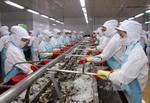 US lowers duty on Viet Nam's shrimp exports