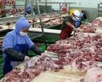 VN suspends pork imports from Hungary and Poland