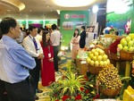 Dong Thap attracts Australia investors