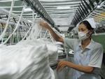 Vietnam's cotton imports surpass $2 billion from Jan-Aug
