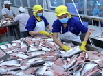 Mekong Delta firms look to Japan