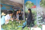 First Ben Tre goods fair opens in HCMC