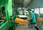 Rubber exports rise in volume but decrease in value