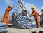 Cement Corporation sets revenue target