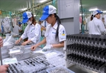 VN is HK businesses' top pick for setting up factories