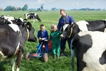 Dutch Lady, 1st dairy company to be conferred 'Royal' title in Netherlands