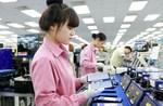 Viet Nam remains a top destination for cross-border investment
