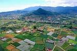 Viet Nam's agriculture sector sets goals for 2020