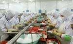 Viet Nam, Egypt to strengthen trade cooperation