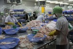 Provinces to boost shark catfish trade