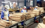 Timber industry asked to beat $11 billion in export