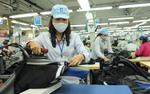 Viet Nam sees reduction of new firms in Feb