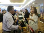 Cuba, VN seek better business ties