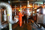 Oil uptrend lifts VN stocks for seventh day