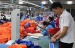 VN poised to become manufacturer of established global brands